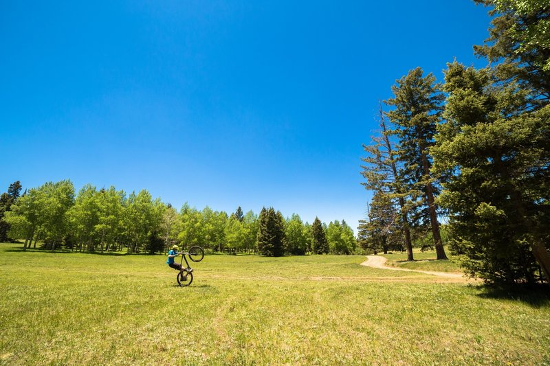 Garcia Park is green when the aspens are in full foliage during June and July and there are some awesome campsites.
