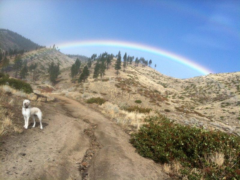 Rainbow over Vicee Canyon.