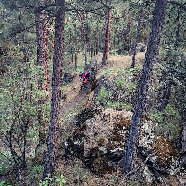 Rocks, wood features and steep decents, Good Times has a little of everything.