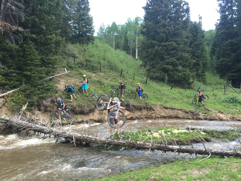The beavers have made a mess of the western portion of this ride.  This is one of two water crossing in this area.
