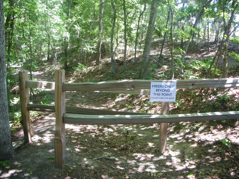 Coquina/Knot junction at top of Coquina Trail. Hikers can continue beyond the double fence. Bikers must take the Knot only!