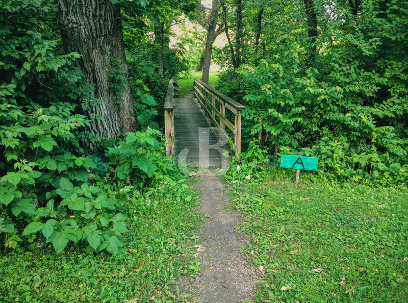 Trail A Entry.