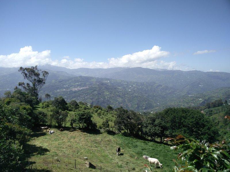 View from Salida Choachi.
