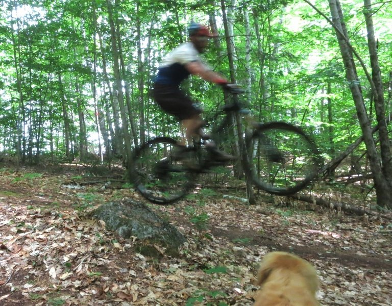 Catching some air while my trusty trail dog watches!