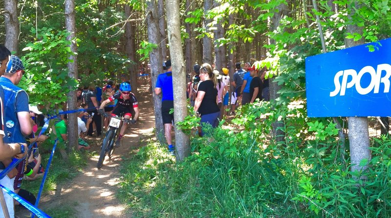 The first racers coming through the pines.