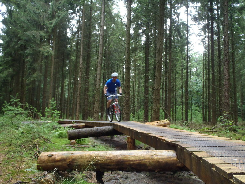 A piece of elevated trail