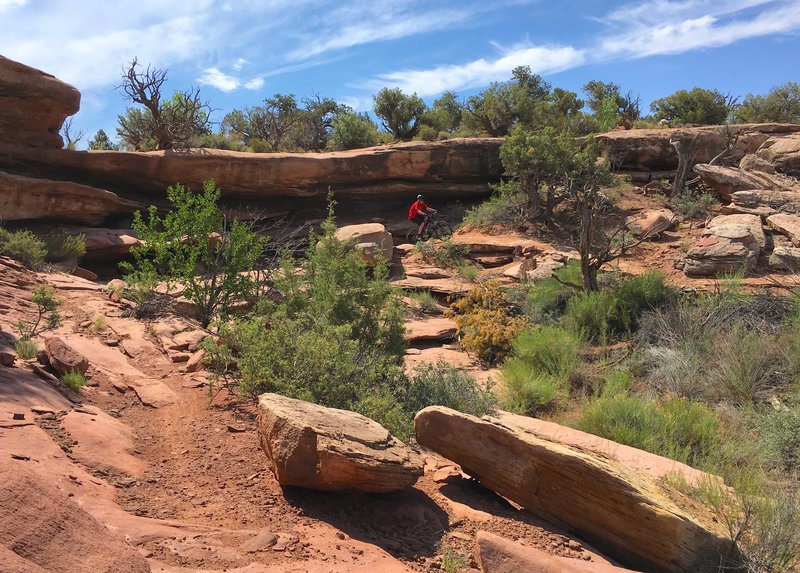 Constant traversing between canyon and rock ledges.