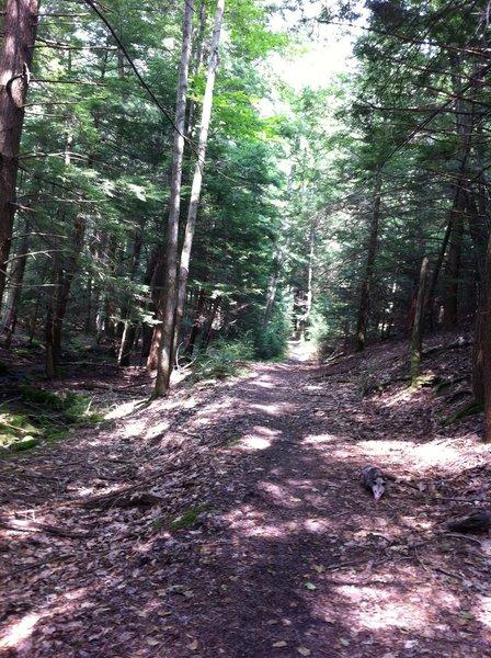 Black Gap Trail