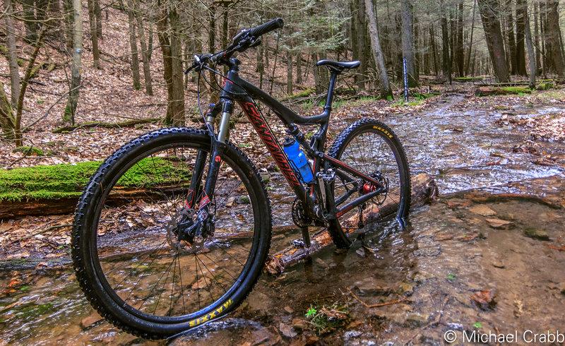Black Gap Trail at Fredricks Gap