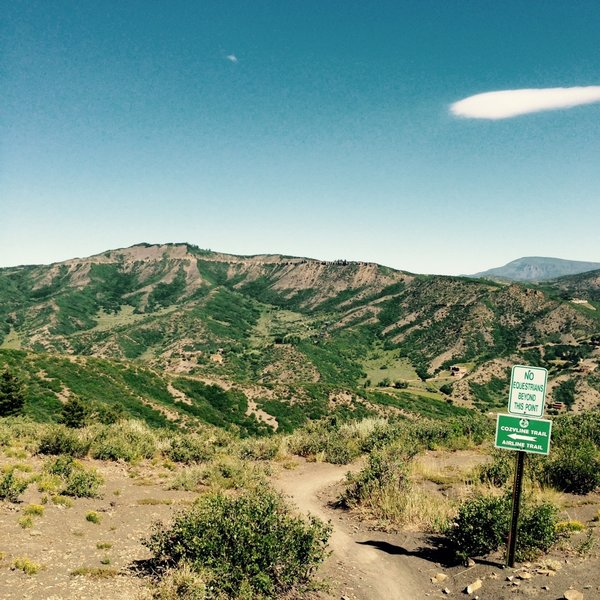 Top of Airline trail straddling Snowmass and Aspen - the look toward Snowmass. July 6.