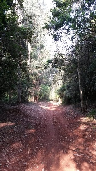 During the rainy season, the trails becomes really muddy. Pic shows when dry.