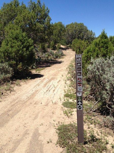 Start of the Elk Drop / Fast Times Trail.