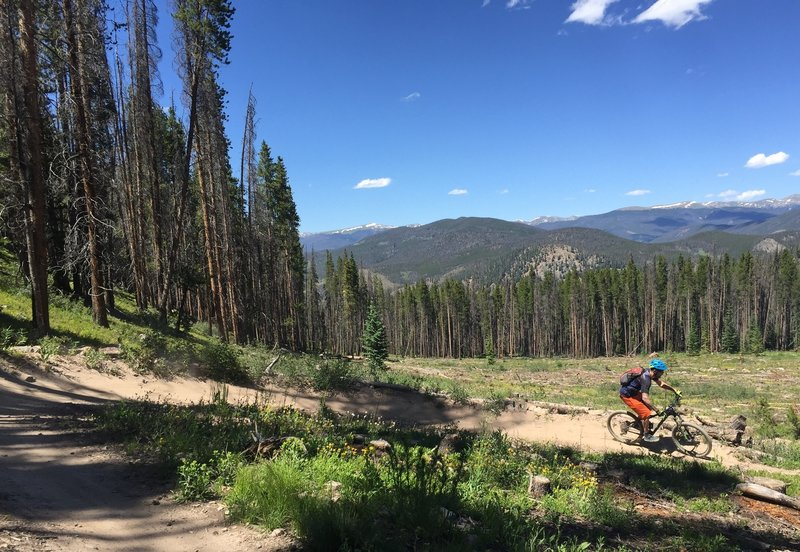 Shredding is easy when the trails are this good!
