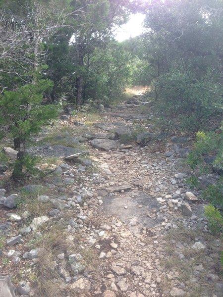 Typical GCSNA escarpment along Twin Oaks.