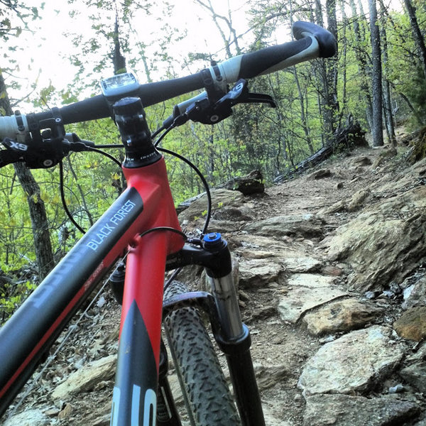 Brissy Ridge Trail at Paris Mountain State Park.