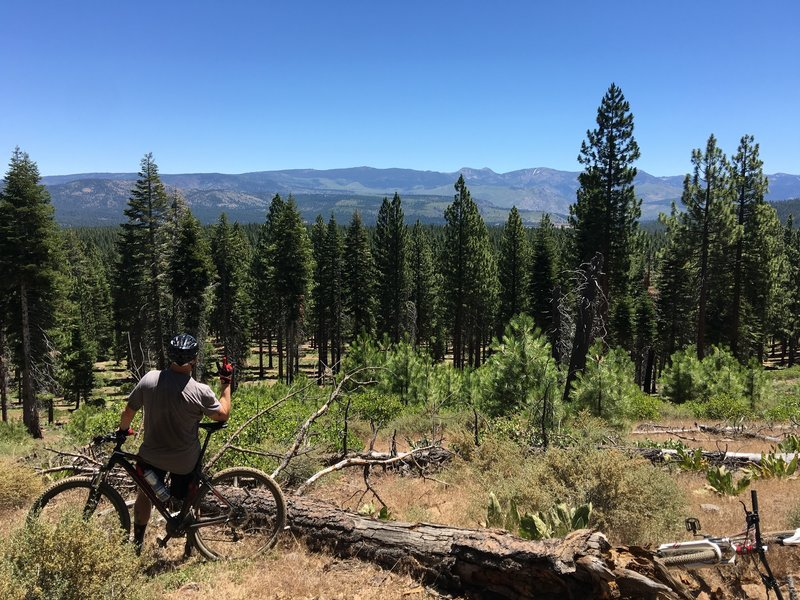 Emigrant Trail, Tahoe National Forest.