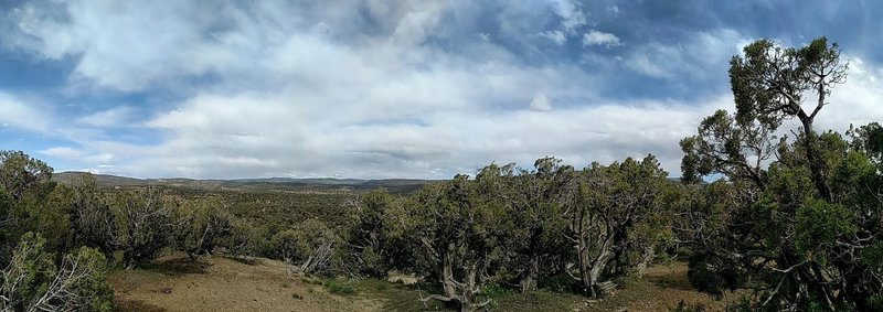 Panorama shot from trailside.