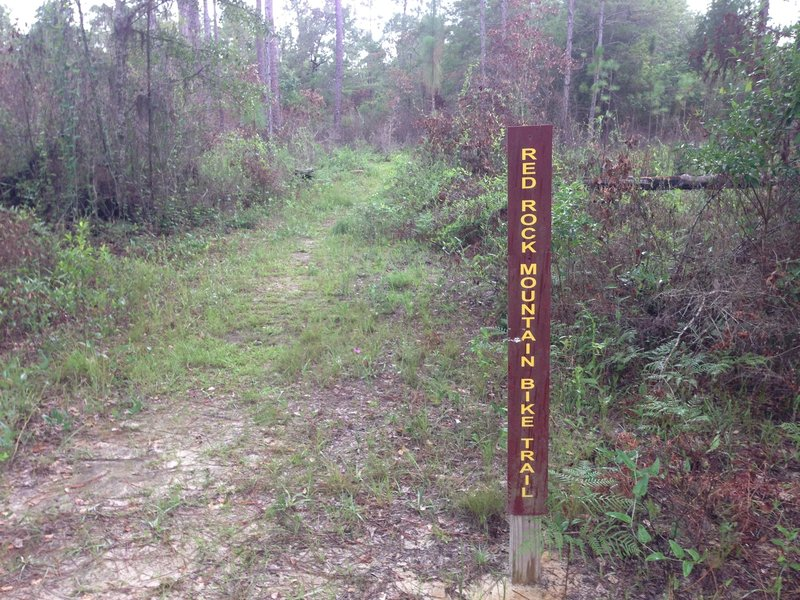 Trail entrance about 100 yards west of Juniper Creek.