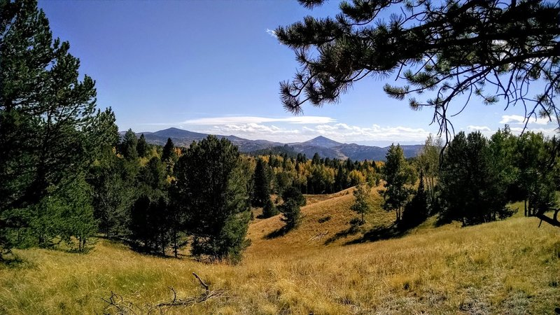 Beautiful pine and aspen groves mix with alpine meadows.