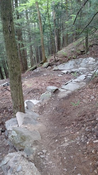 Update to Abington Trail.