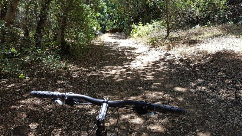 Stone Corral Trail offers brief respite from sun.