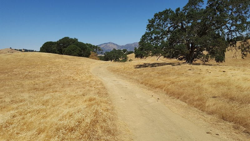 Typical Morgan Territory view and trail.