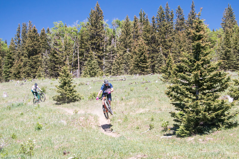 Hittin' booters and poppin' wheelies coming down the SBT outside of Angel Fire, NM!