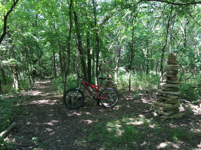 A break area along the trail on the Mt. Lehigh trail.