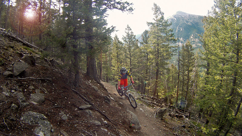 Colorado Trail - 14,235-foot (4,339 m) Mt Shavano looming in the background.