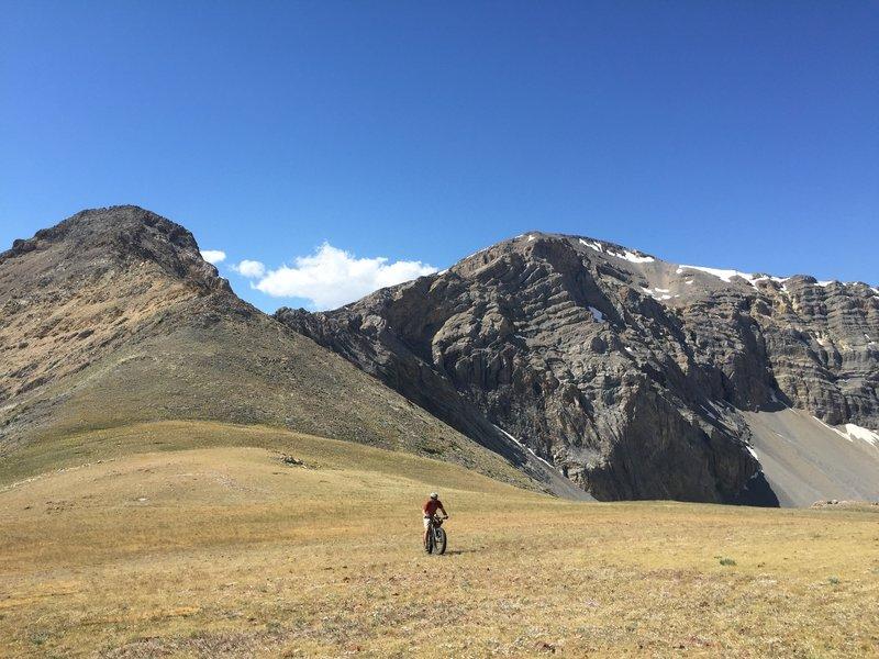 Rolling across a high alpine meadow.