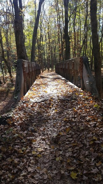 One of a handful of bridges that you'll encounter on the North-South Trail.