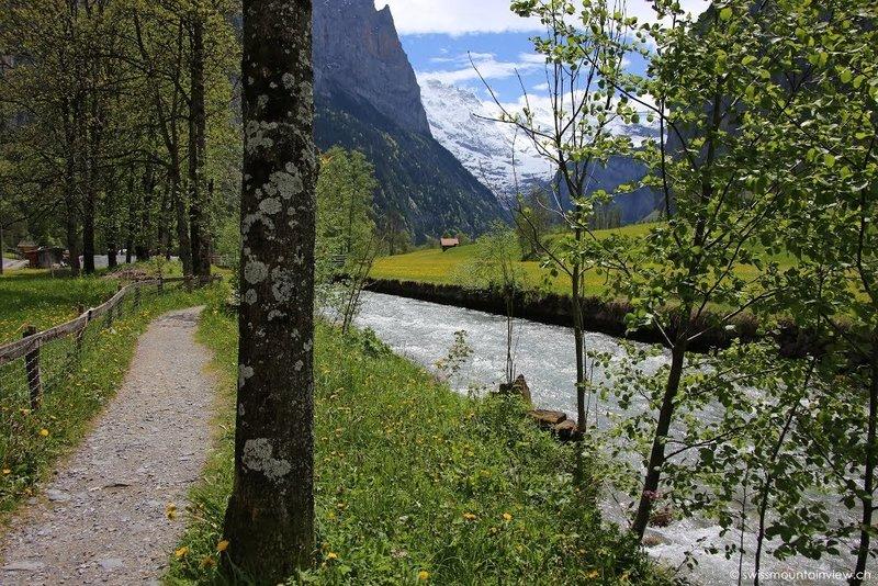 Early summer in Lauterbrunnen valley.