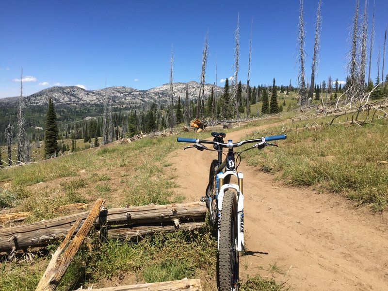 View up to Blackwell Lake and a good shot of the wide doubletrack with decent ATV traffic.