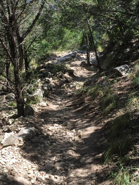 Initial drop into the Canyon Trail.