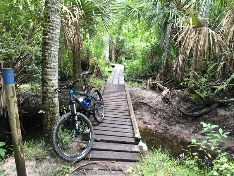 Zipping across the wooden bridges is fun!  With just a hint of danger!!