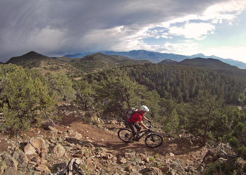 On Rumba ridge/Cottonwood.