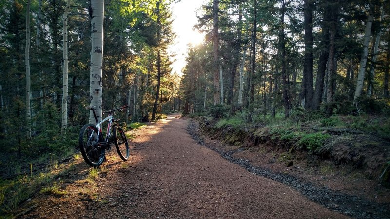 Wide paths are great for new riders.