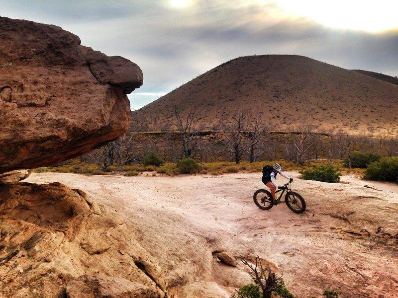 Susan B. rolling the slick rock in Utah.