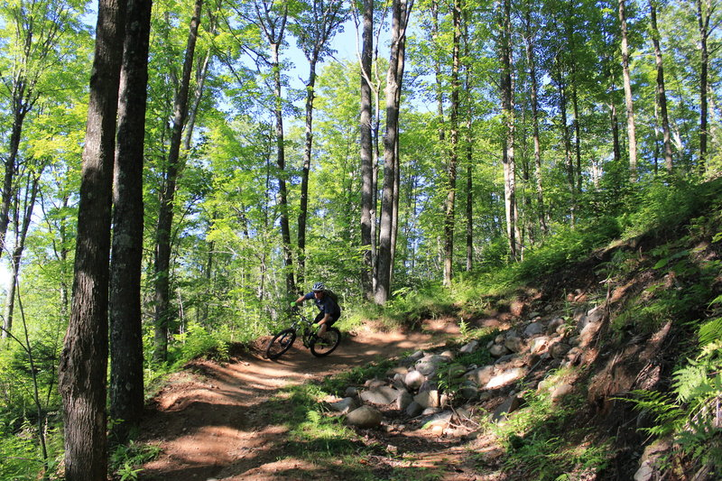 The big berm on Yellow Trail