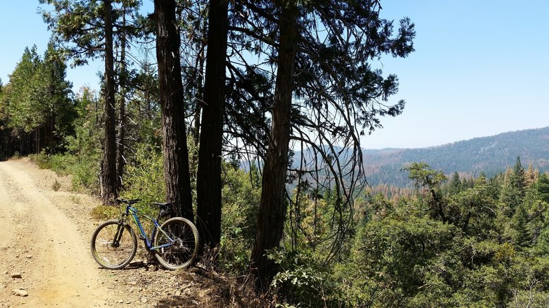 Nice view of Sugar Pine Hills, you can speed up in this down hill, be careful don't miss the single trail to Nelder Grovee.