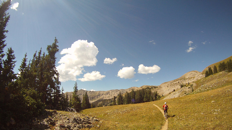 Start of the Canyon Creek singletrack, going to the top
