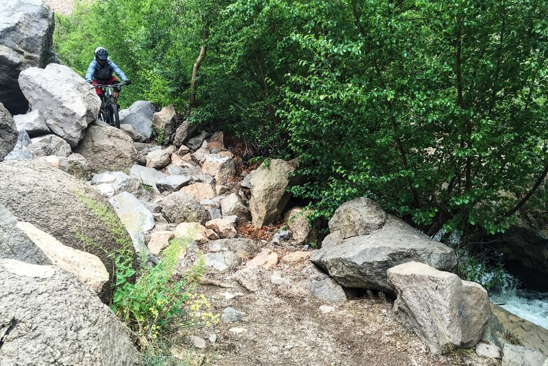 Navigating a chundery section of Rock Creek.