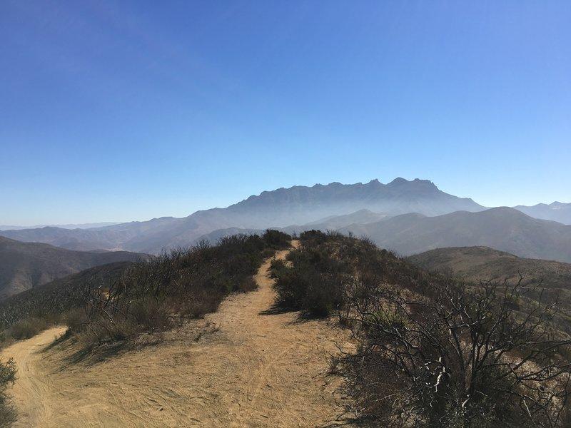 Summit at Sin Nombre Trail (aka Backbone).