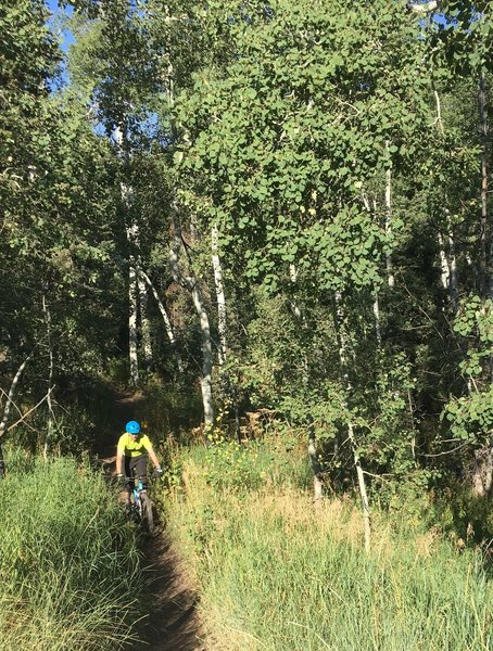 Feeling the joy of the SFotLDC trail descent!