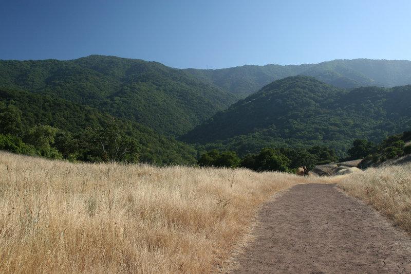 Views from the Randol Trail.