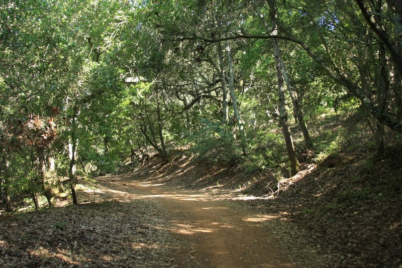 Almaden Quicksilver Park - Mine Hill Trail. with permission from Alexander Avtanski