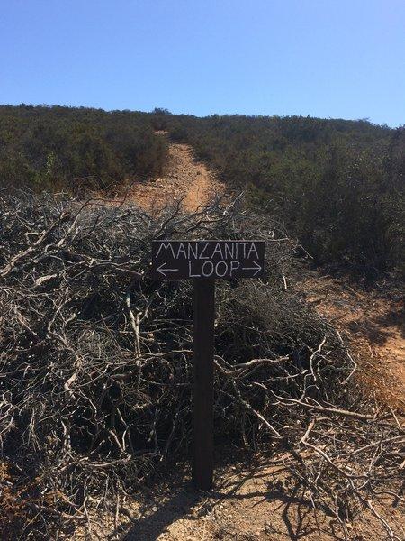 Sign showing the new Manzanita Trail.