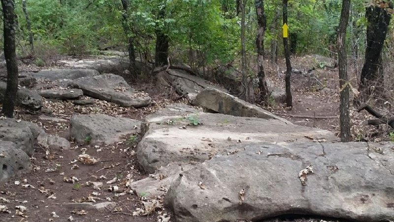 In the boulder portion of the Roadrunner section of the system