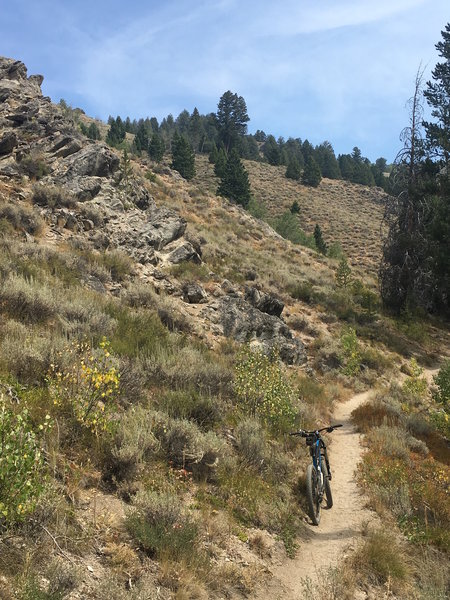 Trail here has a bit of a soft/sandy surface. Later it turns into one long hard packed rock garden as you gain elevation.
