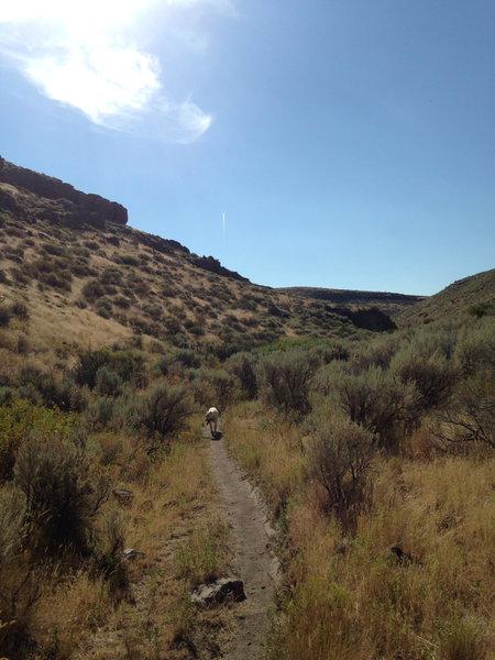 A nice gradual climb or descent.